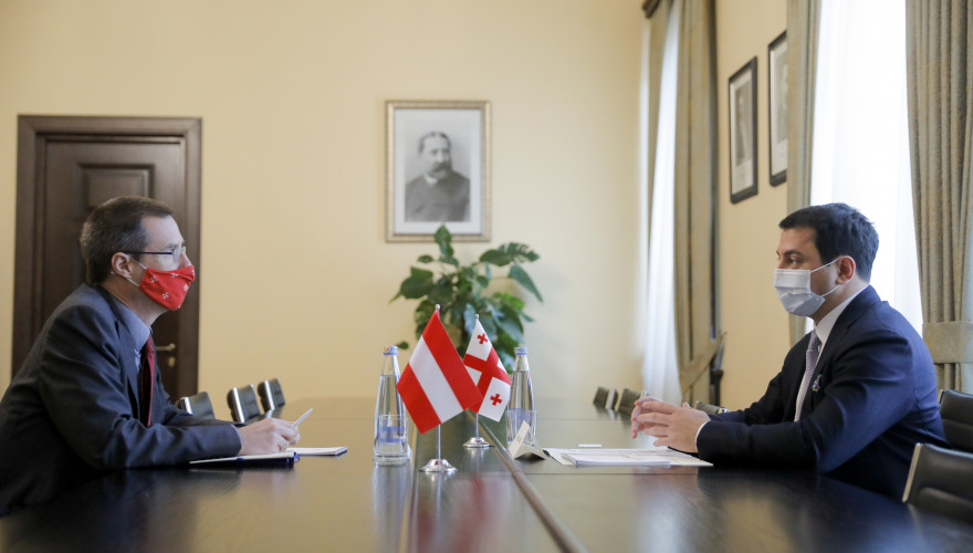 Meeting of Archil Talakvadze with Ambassador of Austria