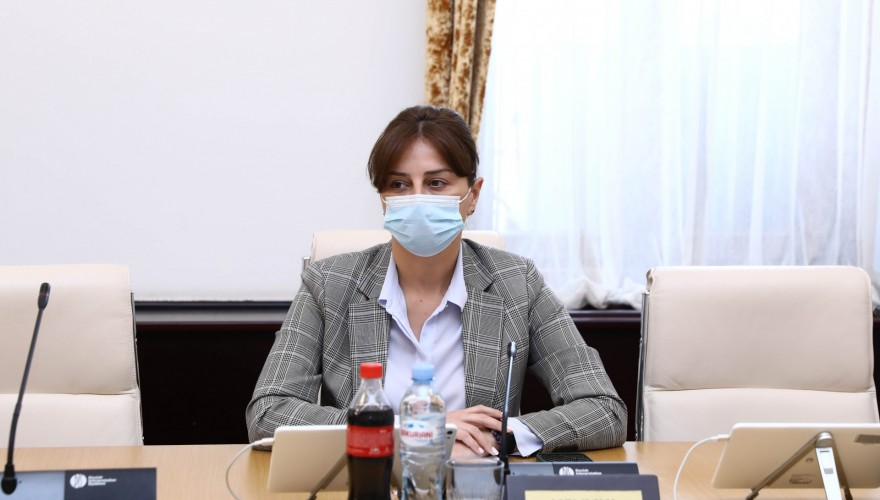 Maia Bitadze: According to the draft law, VAT relief will be extended for the objects to be dismantled